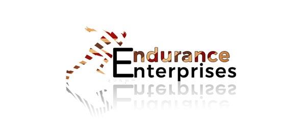 Endurance Enterprises 3